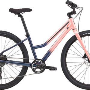Cannondale TreadWell 2 remixte Cosmic Salmon